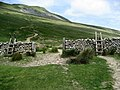 About to ascend Whernside - geograph.org.uk - 848608.jpg