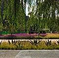 Acera del Parque.jpg