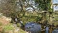 Afon Roe - geograph.org.uk - 410374.jpg