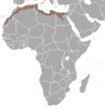 Alcelaphus buselaphus buselaphus.png