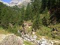 Alpe Devero paesaggio.jpg