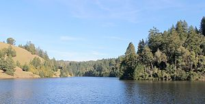 Alpine Lake (Marin County, California) - the lake in 2013, viewed from Alpine Dam