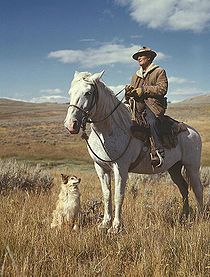 Shepherd with his horse and dog on Gravelly Range Madison County, Montana, August 1942.