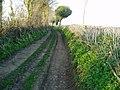 Ancient trackway west of Membury village - geograph.org.uk - 1252027.jpg