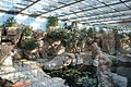 Aquarium Genoa 39.JPG