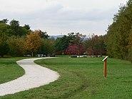 Arboretum Main Taunus