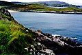 Ards Forest Peninsula - Walk along southern shore - geograph.org.uk - 1327579.jpg
