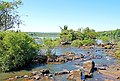 Argentina-01428 - River above the Falls (48995027797).jpg