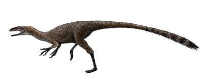 Aristosuchus restoration.jpg