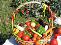 Armenian Vegetable Basket.JPG