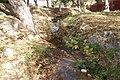 Arroyo, Fraccionamiento Urdiñola, Saltillo Coahuila - panoramio (13).jpg