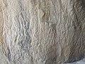 Assorted petroglyphs probably depict a scene (36427353314).jpg