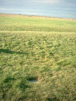 Aubrey holes - A white disc marks the location of Aubrey hole number 21 on the western side of the southern entrance to Stonehenge. The monument's encircling bank and ditch are visible behind it.