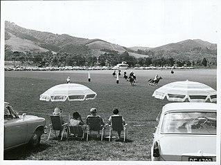 Auckland Polo Club