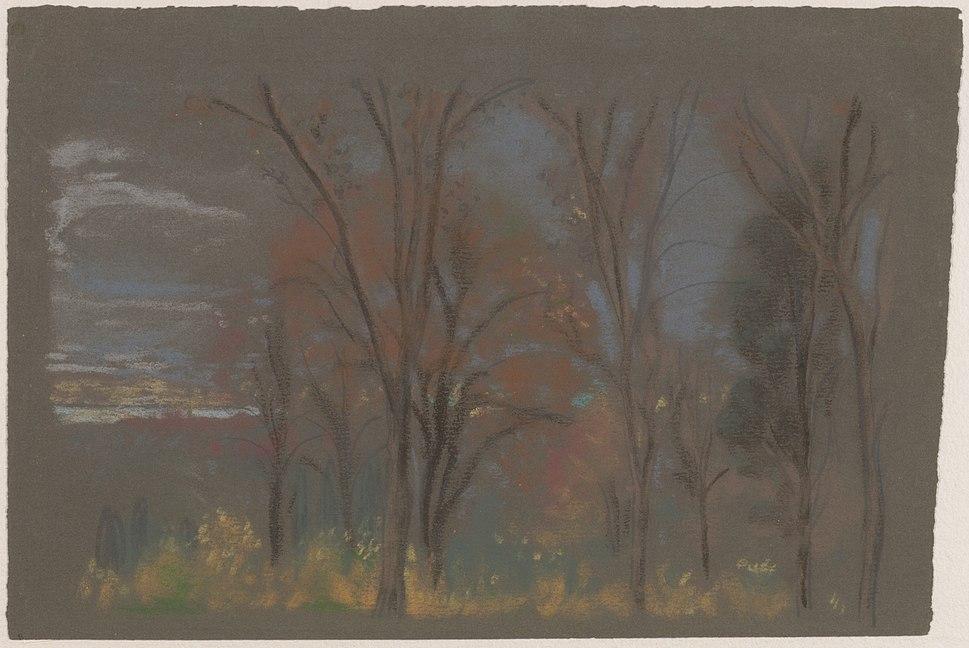 Autumn Woods MET DP158112