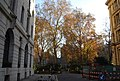 Autumn colours in Finsbury Circus - geograph.org.uk - 1072449.jpg