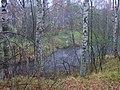 Autumn river- Osennya Mga - panoramio.jpg