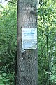 Bílý Potok, rybník Bohuněk 1, informační tabulka.jpg