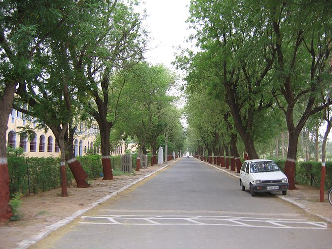 BITS Pilani. Road leading to the institute mai...