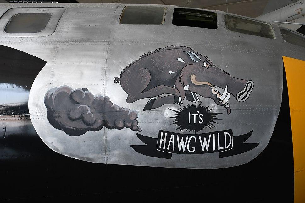 B 29 It's hawg wild