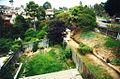 Backyard - panoramio - Mountain Mike Johans….jpg
