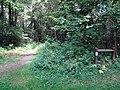 Balade en Forêt de Verrières le 20 août 2017 - 035.jpg