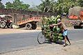 Banana Vendor - Indian National Highway 34 - Gobindapur - Hanskhali - Nadia 2013-03-23 7127.JPG