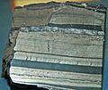 Banded fine-grained pyrite in shale (Urquhart Shale, Mesoproterozoic; Mt. Isa Mines, Queensland, Australia) (18940551220).jpg