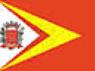 Bandeira General Salgado.png