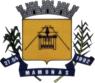 Bandeira de Mamonas MG.png