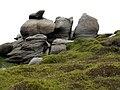 Barrow Stones rock feature - geograph.org.uk - 457653.jpg