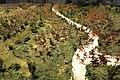 Battle of Crecy, 1346, undated model - Glenbow Museum - DSC00797.JPG