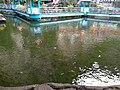 Batu Pond.jpg