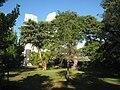 Bayfront Park, Miami, FL - IMG 8003.JPG
