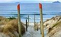 Beach access Ruakaka. NZ (25570727591).jpg