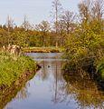 Beekdal Linde Bekhofplas. Een waardevol natuurterrein van Staatsbosbeheer in de provincie Friesland 14.jpg