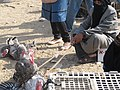 Beer Sheva Bedouin Market 12.jpg