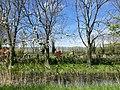 Begraafplaats Noorddijk.jpeg