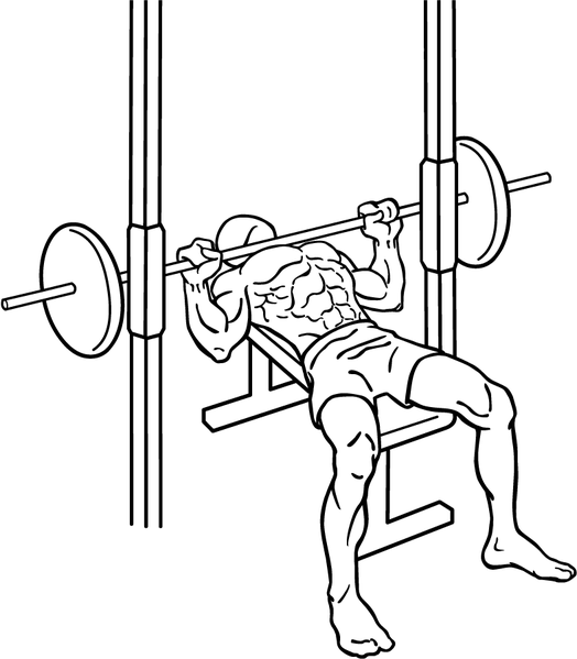 File:Bench-press-3-2.png