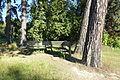 Bergianska trädgården - Stockholm, Sweden - DSC00130.JPG