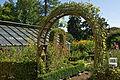 Bern Botanischer Garten Park.jpg