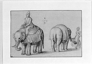 Bernaert de Rijckere - Two Studies of Elephants and their Keepers