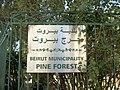 Beyrouth bois des pins 05.jpg