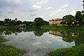 Bidisha Lake - Bengal Engineering and Science University - Sibpur - Howrah 2013-06-06 8585.JPG