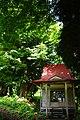 Big maidenhair tree (権現の大イチョウ) - panoramio.jpg