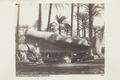 Bild från familjen von Hallwyls resa genom Egypten och Sudan, 5 november 1900 – 29 mars 1901 - Hallwylska museet - 91719.tif