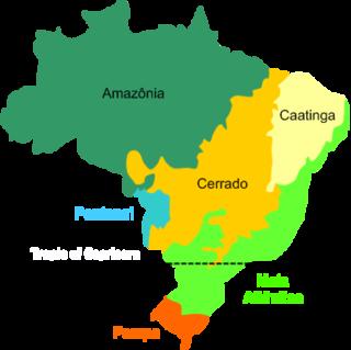 Biomes in Brazil