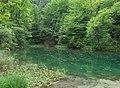 Biosphärenregion Berchtesgadener Land Listsee Juni 2017 1.jpg