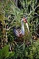 Bird sculpture garden ornament in Nuthurst, West Sussex, England 2.jpg