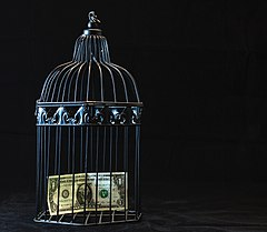 Black Steel Pet Cage With One Dollar (43114564870).jpg